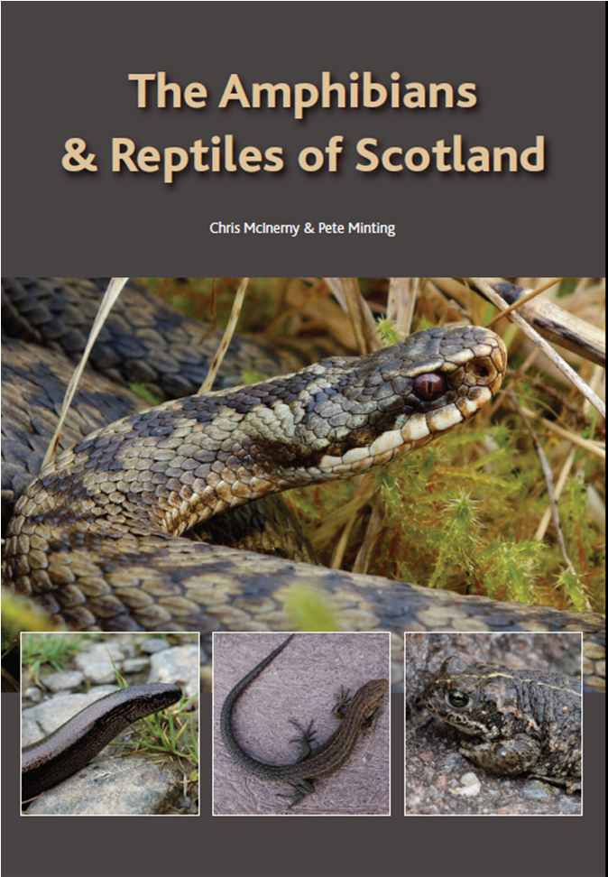 'Amphibians & Reptiles of Scotland' book published