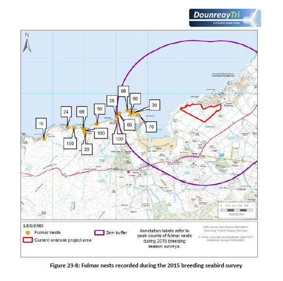 Dounreay Trì Floating Offshore Wind Farm Approved by Council