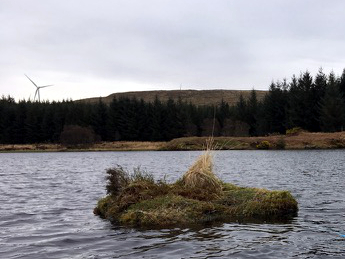 Nest rafts for red-throated divers installed at Freasdail Wind Farm