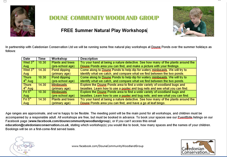 Free natural play workshops
